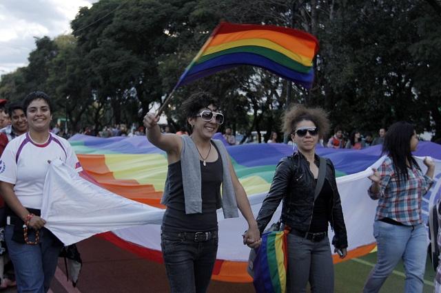 marcha-anual-lesbico-gay-115599